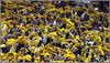 Terrible_towel04_1